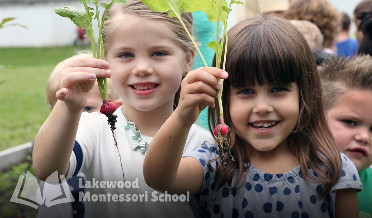Montessori Programs
